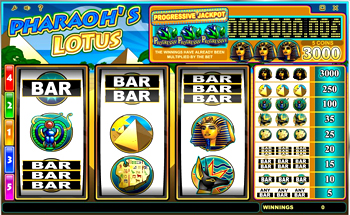 Video gambling machines